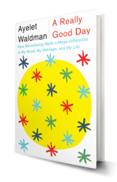 a really good day by ayelet waldman epub