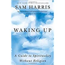 waking up a guide to spirituality without religion epub